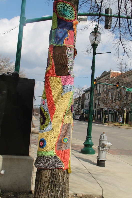Knitting_Bloomington trees - downtown shot street lamps